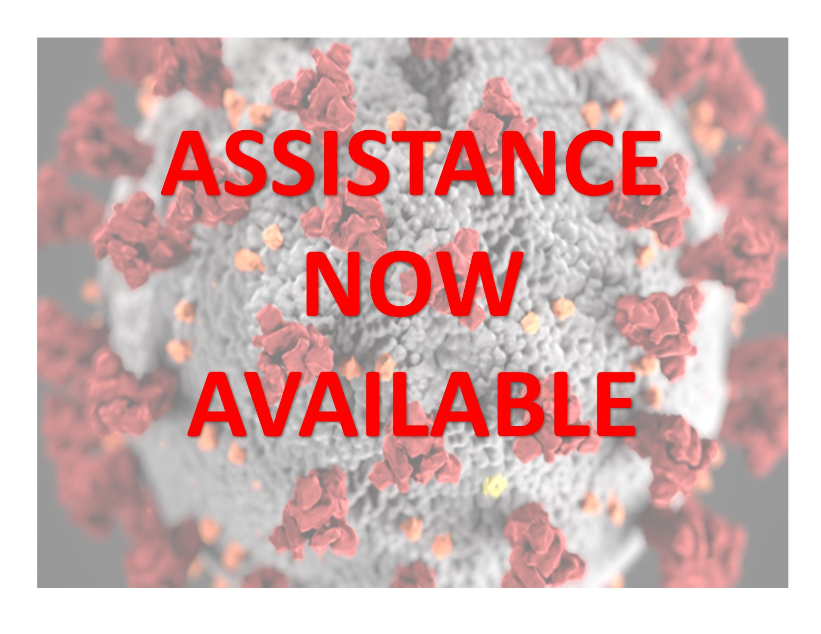 COVID-19 ASSISTANCE, RESOURCES, INFORMATION